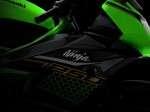 Kawasaki Ninja 250SL 2020