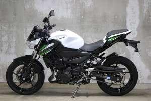 Kawasaki Z250 2019 Tampak Samping Kiri